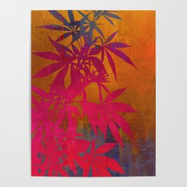 Cannabis Plant Poster