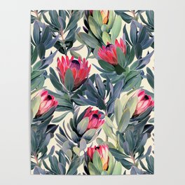Painted Protea Pattern Poster