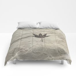 Nature - Leaf in our Past Comforters