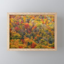 Autumn forest Framed Mini Art Print