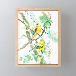 American Goldfinch and Apple Blossom Framed Mini Art Print