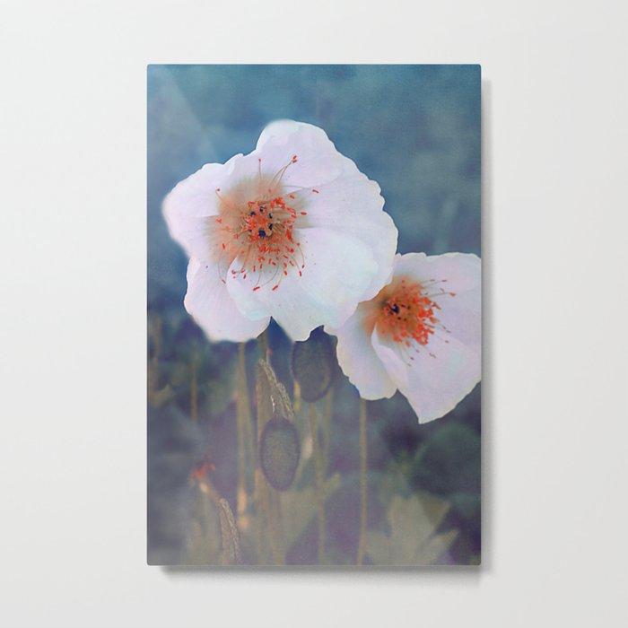 White poppies(2) Metal Print