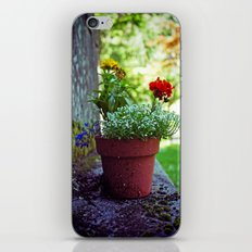 Cemetery plant iPhone & iPod Skin