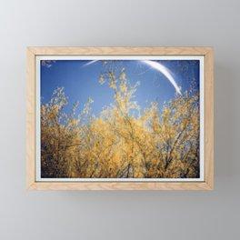 Springtime in Arizona Framed Mini Art Print
