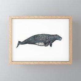 Steller's sea cow Framed Mini Art Print