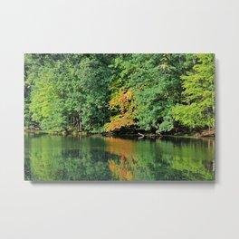 Evergreen Reflections- horizontal Metal Print