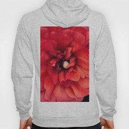 red spring flower Hoody