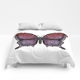 grenadine phantom (Fantosme grenade) Comforters