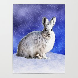 Snow Bunny Poster