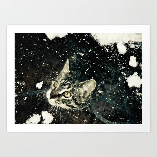 Intrigued  Art Print