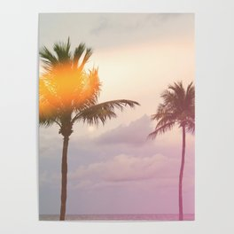 Palm Trees on the Beach Poster