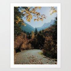Washington Fall Rd Art Print