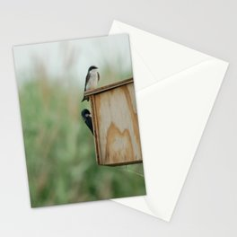 Birds at New Jersey Meadowlands Nature Preserve Stationery Cards
