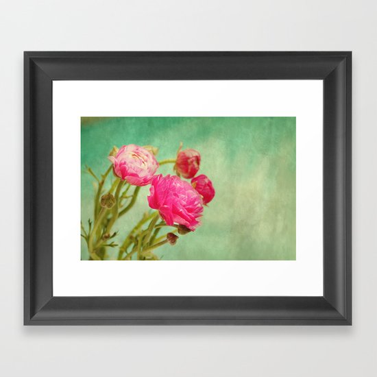 Ranunculus in Spring Framed Art Print