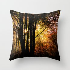 shadows into light Throw Pillow