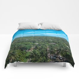 The Palm Jungle Comforters