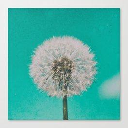 Green Blue Dandelion Canvas Print