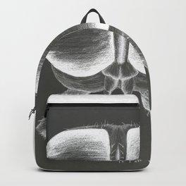 A Fly's Dilemma - invert Backpack