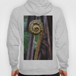 Fiddlehead Fern Hoody
