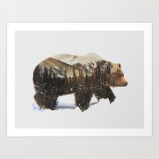 Arctic Grizzly Bear Art Print