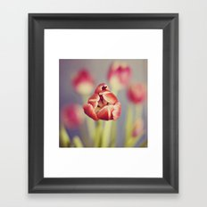 center stage Framed Art Print