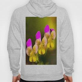 Colorful violets  - beauties of nature - #Society6 - #Buyart Hoody