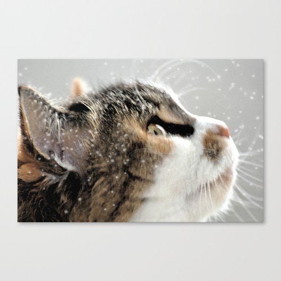 >^..^< .... in the Snow Canvas Print
