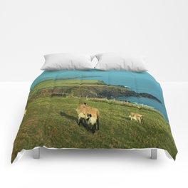 Dingle Peninsula Comforters
