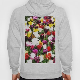 Full spring colors Hoody
