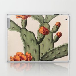 Botanical Cactus Laptop & iPad Skin
