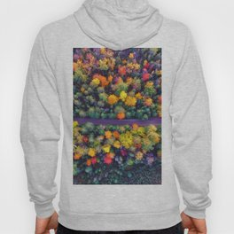 The Autumn Forest (Color) Hoody