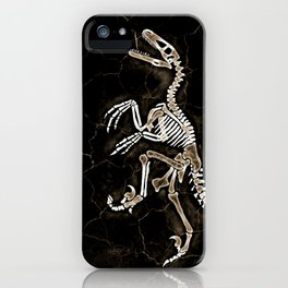 Dino Fossil 2 iPhone Case