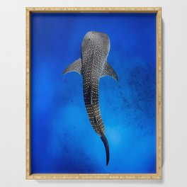 Whale Shark Serving Tray