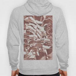 Fractured Flora Dusty Rose Hoody