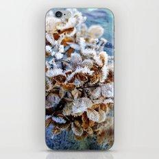 Frozen Poetry iPhone & iPod Skin