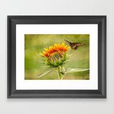 Yang Sunflower Framed Art Print