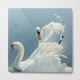 Swan Lake #2 Metal Print