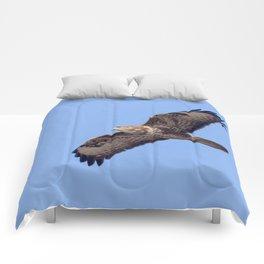 Common Buzzard (Buteo buteo) in flight Comforters