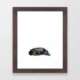 Sleeping Dog Framed Art Print