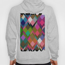 Poetry and Boxes Hoody