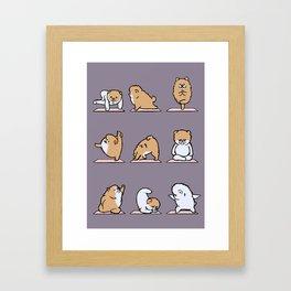 Pomeranian yoga Framed Art Print