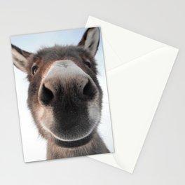 Sophia Smiling Stationery Cards