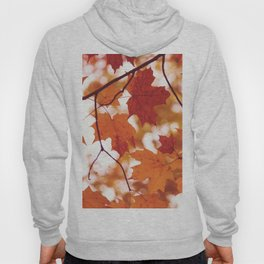 Fluttering from the Autumn tree Hoody