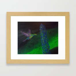 """Hummingbird and Delphinium"" Framed Art Print"