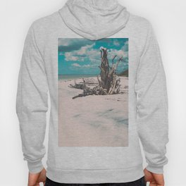Ocean shore and fallen tree in Lovers Key, Florida Hoody