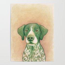 Pointer dog - Jola 02 Poster
