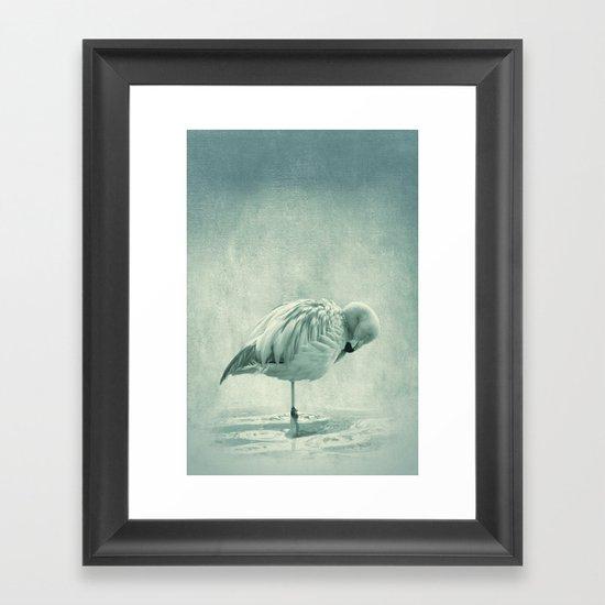 Flamingo Blues Framed Art Print