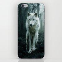 arya stark iPhone & iPod Skins featuring Wolf by Julie Hoddinott