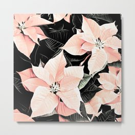 Poinsettia Christmas Flowers In Pink and Black Metal Print
