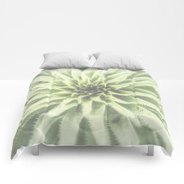 Sotol Agave Abstract by Murray Bolesta Comforters